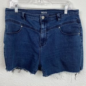 Urban Outfitters BDG Cutoff Shorts size 31